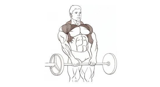 Zdvíhání-ramen-ve-stoje-s-velkou-činkou-před-tělem-cvičení-doma-posilování-kulturistika